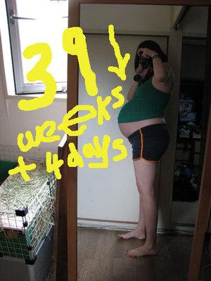 395weeks